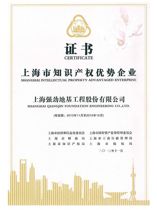 上海市知识产权优势企业