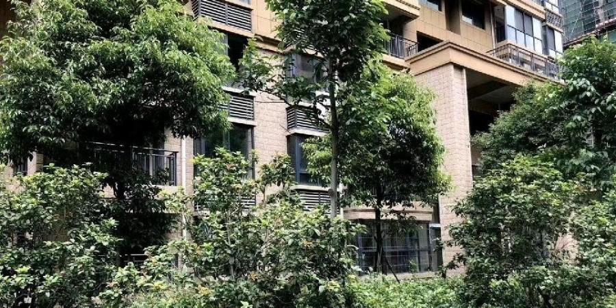 基坑工程:上海龙湾华庭二期地下库